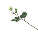 View large Artificial 60cm Single Stem Closed Bud Cream Roses x 6 - Artificial Luxury Silk Flower Range UK