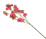 View large Artificial 129cm Single Stem Cerise Japanese Cherry Blossoms x 6 - Artificial Luxury Silk Flower Range UK