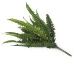 View large Artificial 30cm Boston Fern Plug Plant - Artificial Bedding Plug Plant and Display Range UK