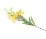 View large Artificial 75cm Single Stem Golden Yellow Asiatic Lily - Artificial Luxury Silk Flower Range UK