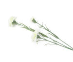 View large Artificial 70cm Single Stem White and Green Carnation - Artificial Luxury Silk Flower Range UK