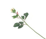 View large Artificial 60cm Single Stem Closed Bud Pale Yellow Rose - Artificial Luxury Silk Flower Range UK