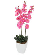 "View large Artificial 3ft 7"" Pink Phalaenopsis Orchid Plant - Artificial Silk Plant and Tree Range UK"