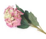 View large Artificial 90cm Single Stem Pink and Green Mophead Hydrangea - Artificial Luxury Silk Flower Range UK