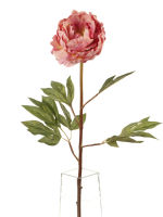 View large Artificial 78cm Single Stem Pink Peony - Artificial Luxury Silk Flower Range UK