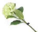 View large Artificial 87cm Single Stem Green Mophead Hydrangea - Artificial Luxury Silk Flower Range UK