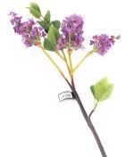 View large Artificial 76cm Single Stem Purple Lilac Blossom - Artificial Luxury Silk Flower Range UK