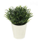 View large Artificial 18cm Yew Pine Plant - Artificial Silk Plant and Tree Range UK