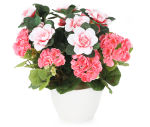 View large Artificial Pink Geranium and Azalea Display in a 15cm White Round Pot - Artificial Bedding Plug Plant and Display Range UK