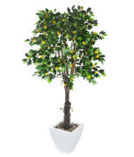 View large Artificial 6ft Lemon Tree - Artificial Silk Plant and Tree Range UK