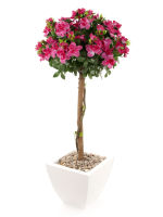 "View large Artificial 3ft 6"" Cerise Azalea Tree - Artificial Silk Plant and Tree Range UK"