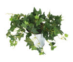 View large Artificial 25cm Green Ivy Plug Plant - Artificial Bedding Plug Plant and Display Range UK