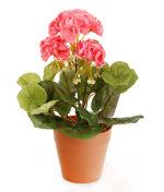View large Artificial 24cm Pink Zonal Geranium Plug Plant - Artificial Bedding Plug Plant and Display Range UK