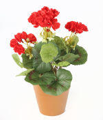 View large Artificial 24cm Red Zonal Geranium Plug Plant - Artificial Bedding Plug Plant and Display Range UK