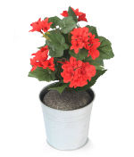 View large Artificial 24cm Red Begonia Plug Plant - Artificial Bedding Plug Plant and Display Range UK
