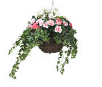 "View large Artificial Pink and White Azalea and Geranium Display in a 14"" Round Willow Hanging Basket - Artificial Bedding Plug Plant and Display Range  UK"