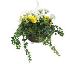 "View large Artificial Yellow and White Pansy and Geranium Display in a 14"" Round Willow Hanging Basket - Artificial Bedding Plug Plant and Display Range UK"