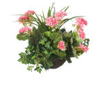 "View large Artificial Pink Geranium Display in a 10"" Round Willow Hanging Basket - Artificial Bedding Plug Plant and Display Range UK"