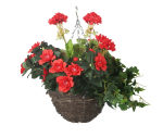 "View large Artificial Pink and Red Azalea Display in a 10"" Round Willow Hanging Basket - Artificial Bedding Plug Plant and Display Range UK"