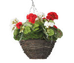 "View large Artificial Red and White Geranium Display in a 10"" Round Willow Hanging Basket - Artificial Bedding Plug Plant and Display Range UK"