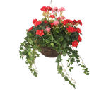 "View large Artificial Red and Pink Azalea and Geranium Display in a 14"" Round Willow Hanging Basket - Artificial Bedding Plug Plant and Display Range UK"