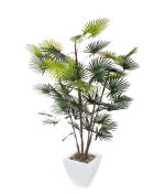 View large Artificial 5ft Finger Palm Tree - Artificial Silk Plant and Tree Range UK