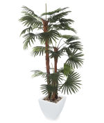 View large Artificial 6ft Finger Palm Tree - Artificial Silk Plant and Tree Range UK