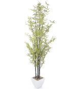"View large Artificial 6ft 5"" Black Bamboo Tree - Artificial Silk Plant and Tree Range UK"