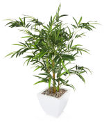 "View large Artificial 3ft 8"" Golden Bamboo Tree - Artificial Silk Plant and Tree Range UK"