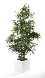 View large Artificial 5ft Long Leaf Fig Tree - Artificial Silk Plant and Tree Range UK