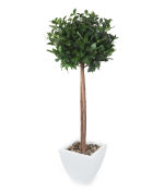 View large Artificial 4ft Bay Tree Ball Topiary - Artificial Silk Plant and Tree Range UK