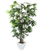 View large Artificial 6ft Finger Palm Tree - Artificial Silk Plant and Artificial Tree Range UK