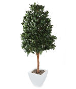 View large Artificial 5ft Bay Tree Pyramid Topiary - Artificial Silk Plant and Tree Range UK