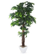 View large Artificial 6ft Mango Tree - Artificial Silk Plant and Tree Range UK