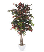 "View large Artificial 7ft 2"" Cinnamon Tree - Artificial Silk Plant and Tree Range UK"