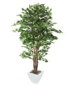 View large Artificial 6ft Green Japanese Maple Tree - Artificial Silk Plant and Tree Range UK