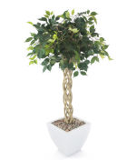 "View large Artificial 4ft 1"" Exotica Weeping Fig Tree - Artificial Silk Plant and Tree Range UK"